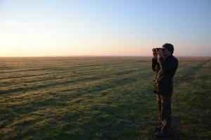 Alexandr Mezinov, head of Askania-Nova's zoo,  counting cranes in the steppe. Photo by: Dimiter Kenarov